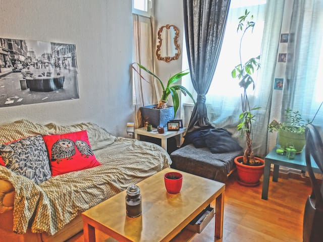 Comfy and big room in vibrant and diverse Berlin