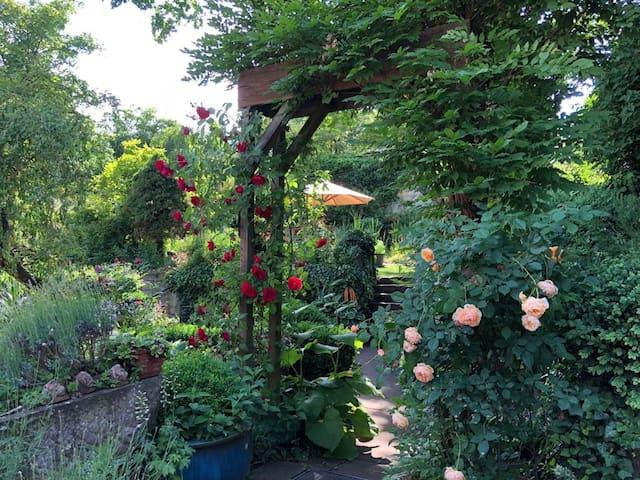 Tor zum Frankenweinparadies - ruhig und idyllisch
