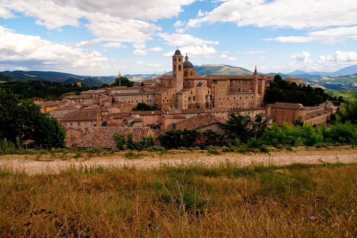 near Urbino apartment - Fermignano