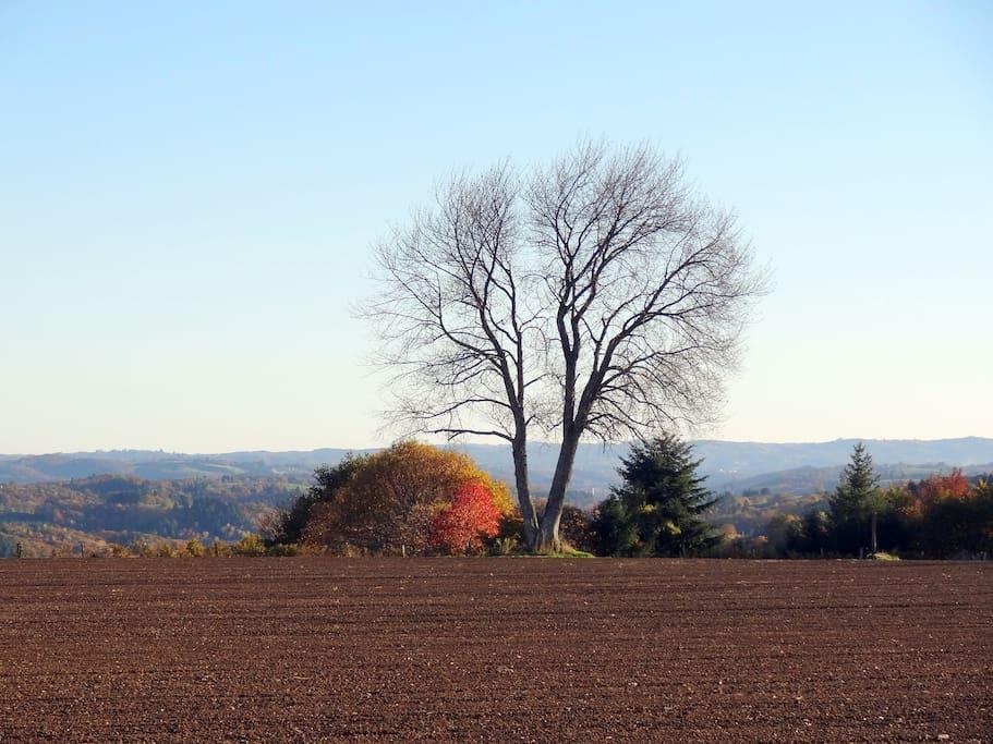 Labours d'automne. L'entrée du hameau bénéficie d'un des plus beaux panoramas de la région, avec vue dégagée sur 300°.