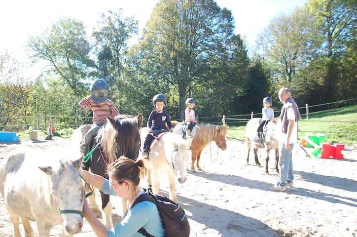 Yourte en bois en Haut Languedoc avec les poneys.. - Cambounès - Jurta