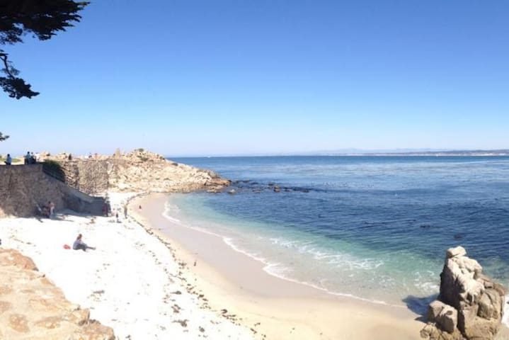 Beach Cottage - Pacific Grove - Huis