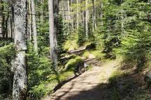 Sentiers de randonnées