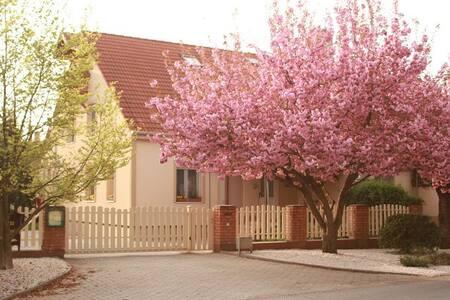 Kis Szárcsa Vendégház - Gárdony