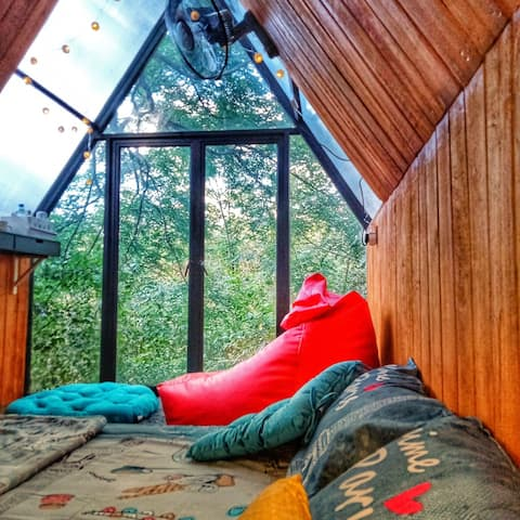 Area 4 | Bermuda treehouse