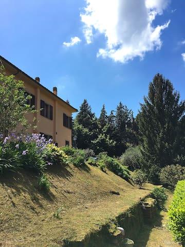 Villa i Cedri on quiet Lucca hills - Lucca - Villa