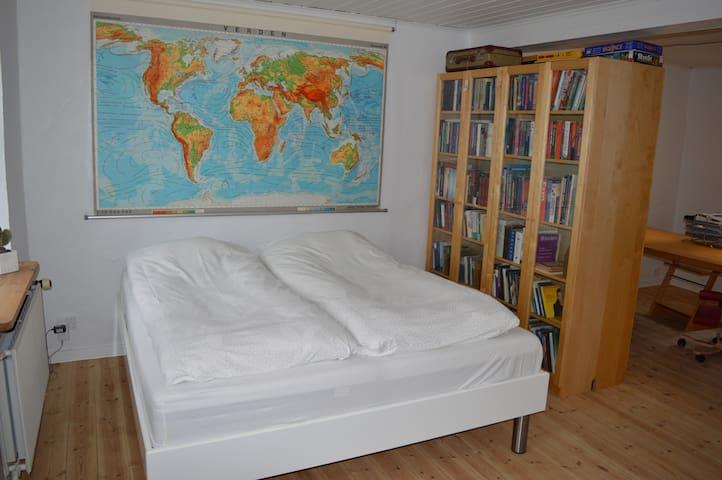 Stort lyst værelse med eget bad/indgang i Sydbyen - Silkeborg - Řadový dům