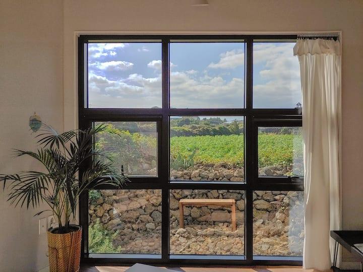 조용한 뒷마당, 큰 창밖엔 초록과 돌담이 가득한 복층독채_아이보리매직 여럿채