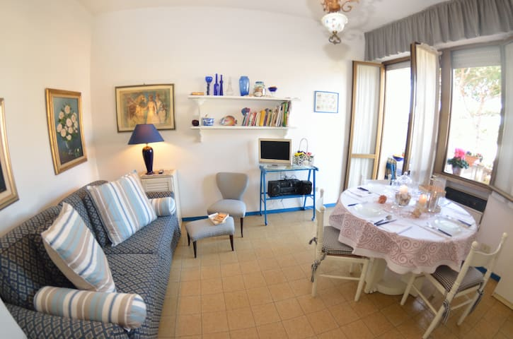 Nice Flat Delfino only 300 m from the sea, lift