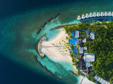Raa Atoll Bungalow Beachfront