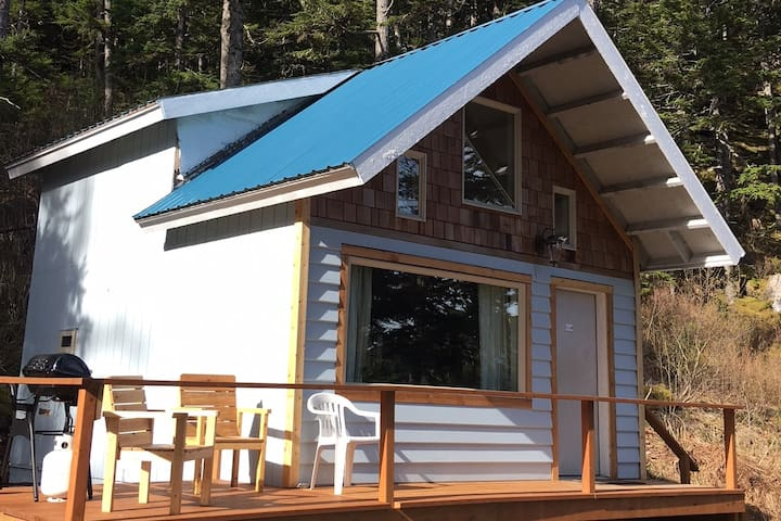 Cozy Cabin 1