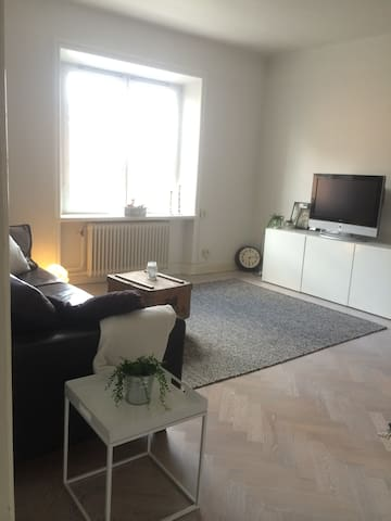 Living room with comfortable sofa and TV