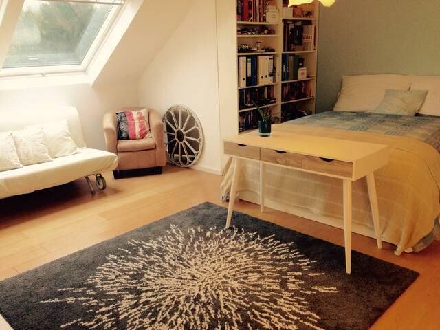Gemütliches 1-Zimmer-Appartement (30 qm)