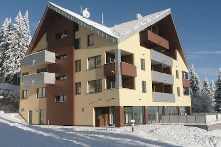 Apartment 4+1+1 - Martin