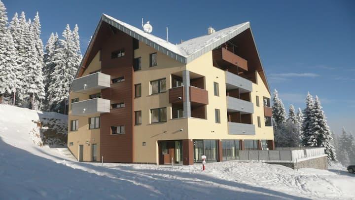 Apartment 4+1+1