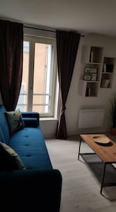 Nancy vieille ville appartement charmant