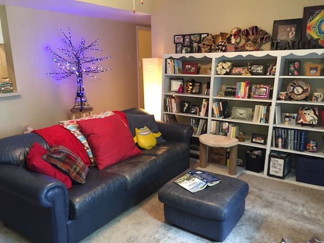 Book Lover's Hideaway, NASA - Friendswood - Apartment