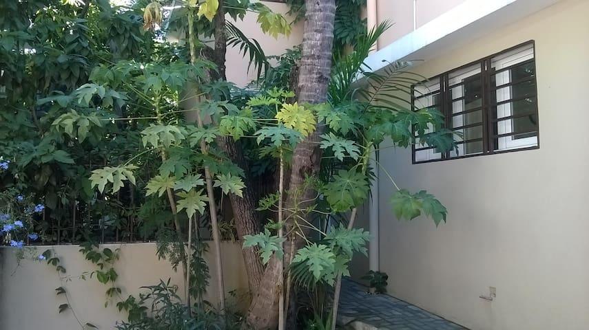 Metellus Apartments:  38 Est - Port-au-Prince - Apartment