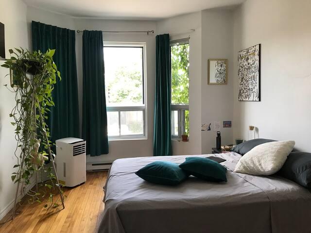 Spacious & bright room, hearth Plateau / Mile-End