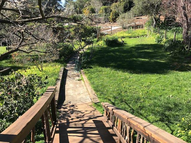 Charming in-law retreat w/patio & scenic garden