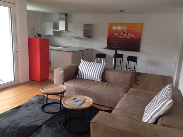 moderne 3,5 Zi Wohnung - Dornach - Daire