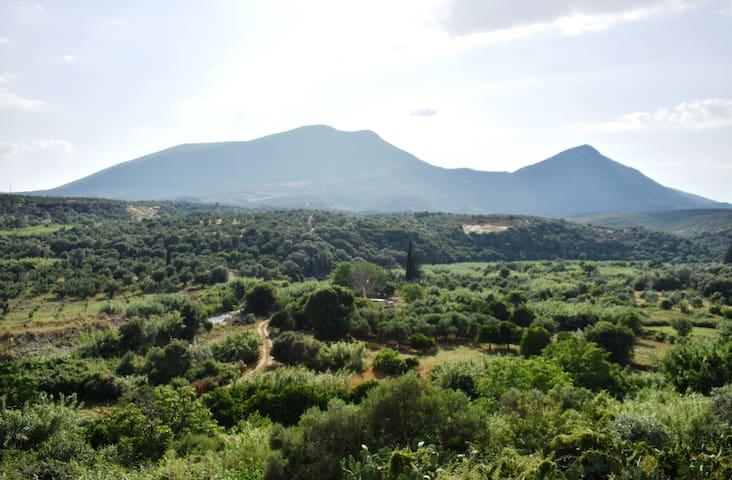 Θέα από το χωριό προς τα βουνά Βουλκάνο & Ιθώμη/ View from the village at the mountains Vulcano & Ithomi