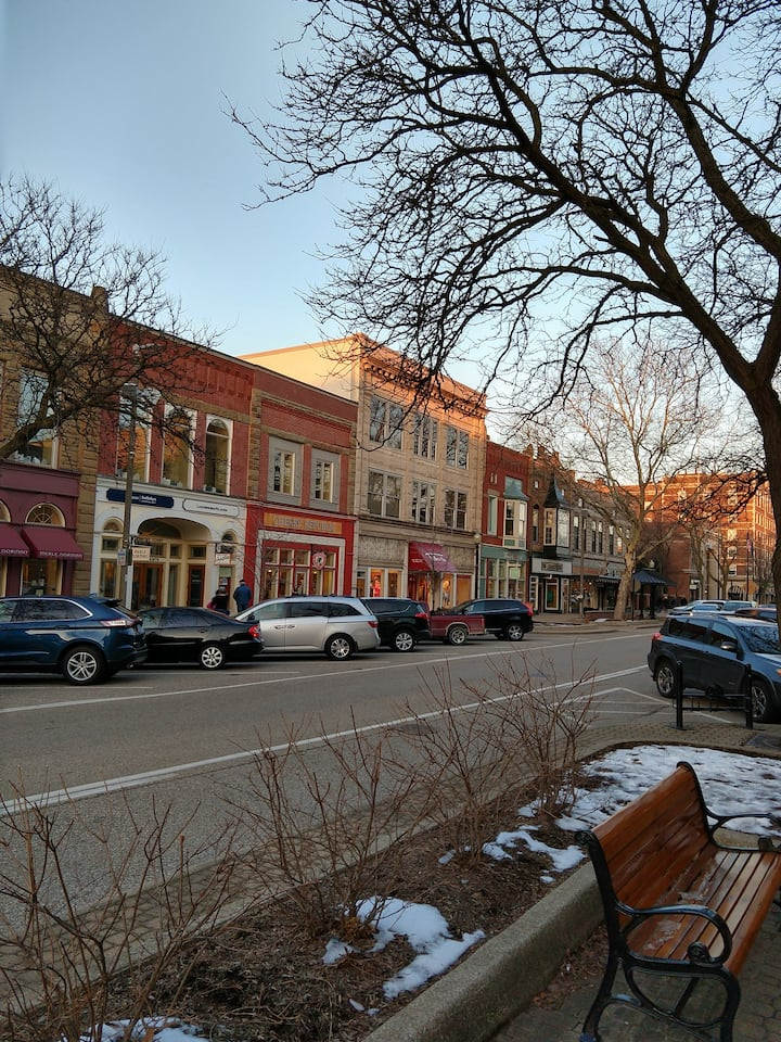 Historic downtown Holland