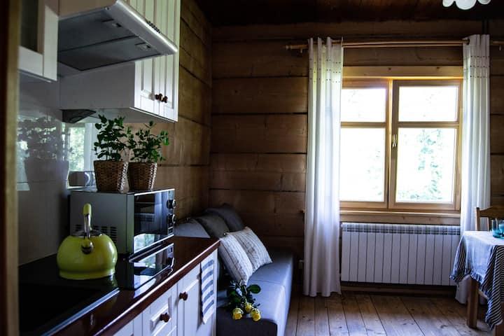 Apartament Jodełka z widokiem na góry