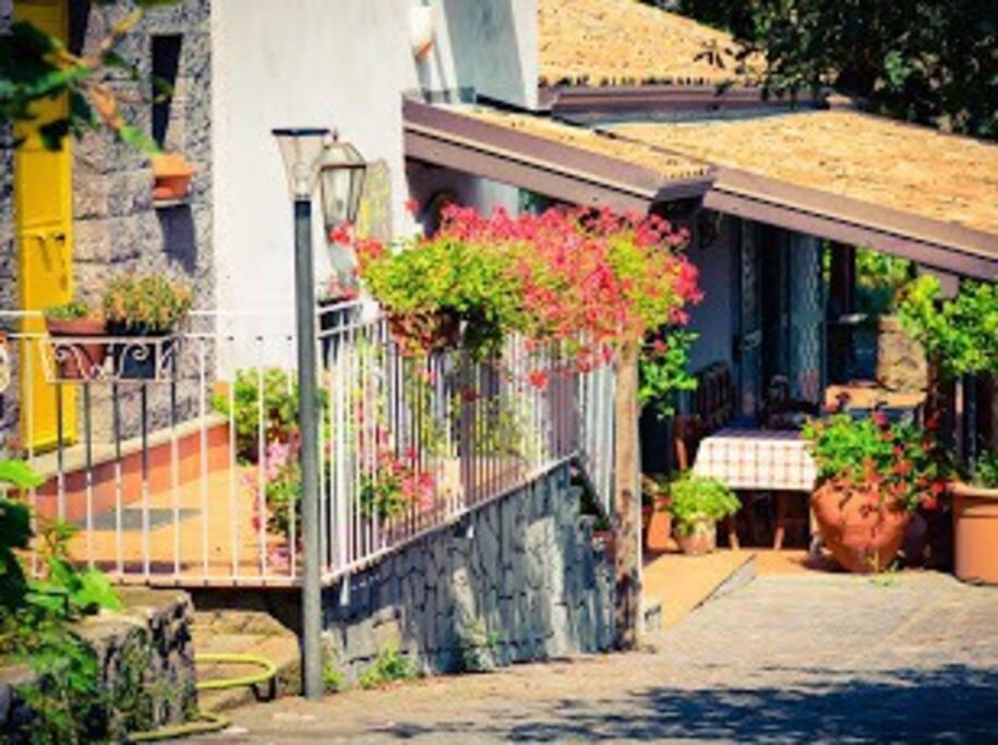 Ristorante - Restaurant area