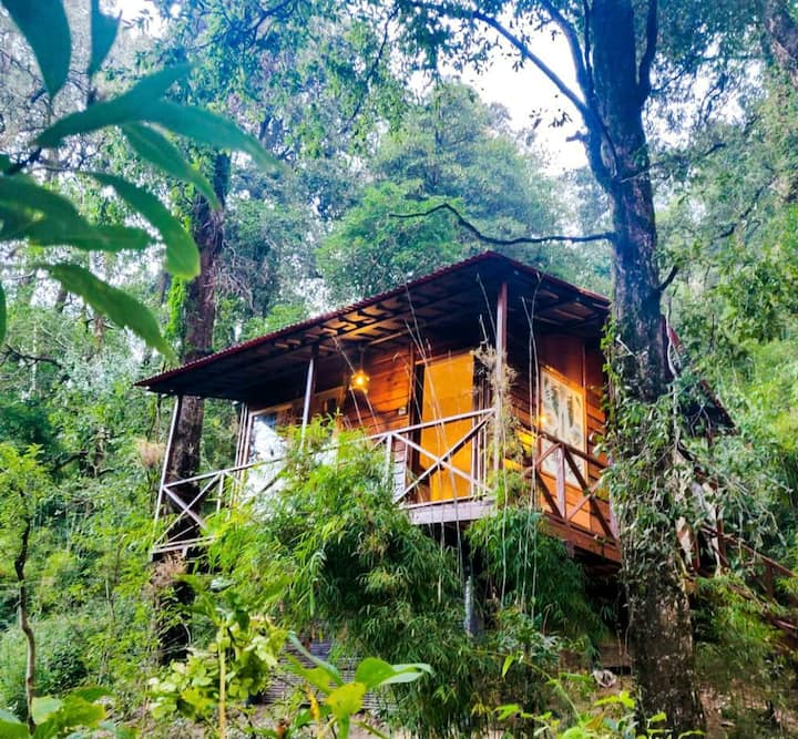 Ayar Jungle Resorts - The Machan/Treehouse