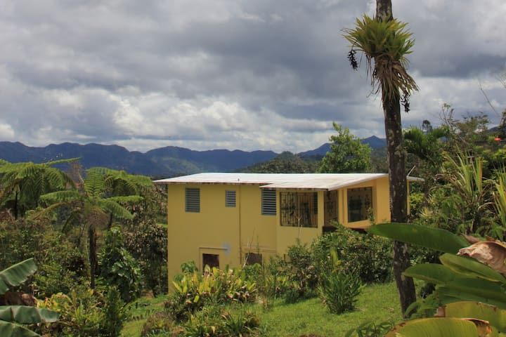 PR Four Corners (Utuado/Jayuya/Ponce/Adjuntas)