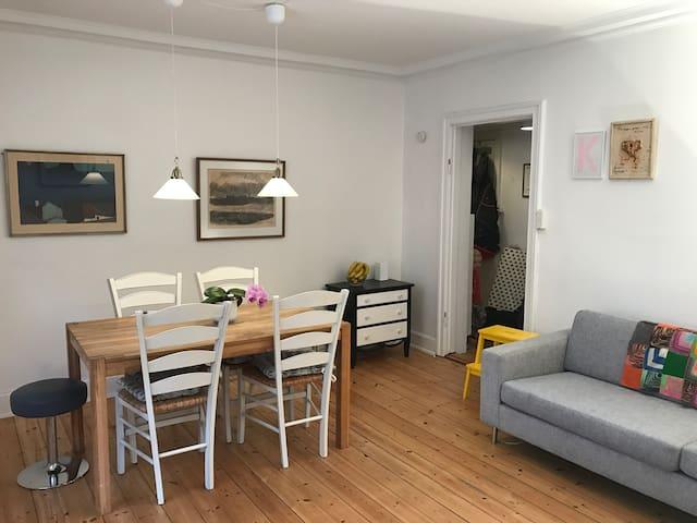 Cosy Copenhagen apartment - Copenhagen