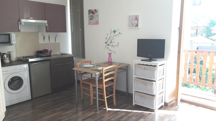 Très beau studio refait neuf au centre du village