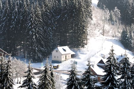 Your house in the heart of the Alps - Alpl