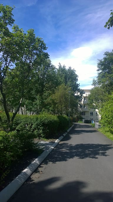 behind of house and park of townhouse
