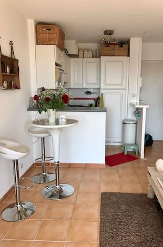 Bel appartement avec vue mer imprenable - Mandelieu-la-Napoule - Pis