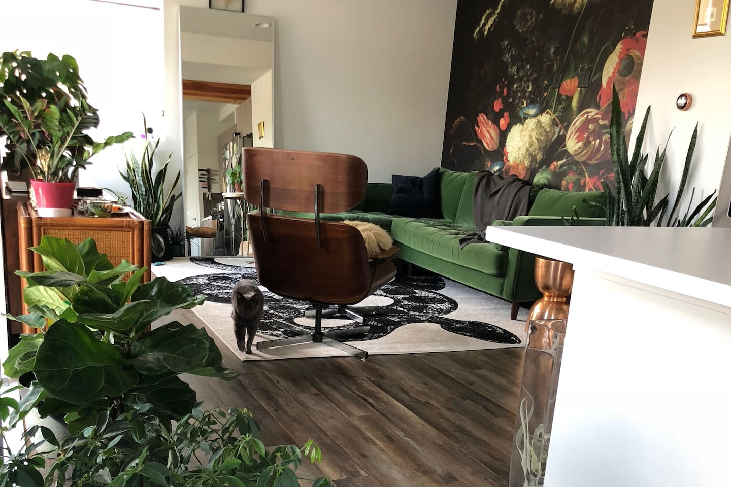 Cozy, bright living room with lots of plants!
