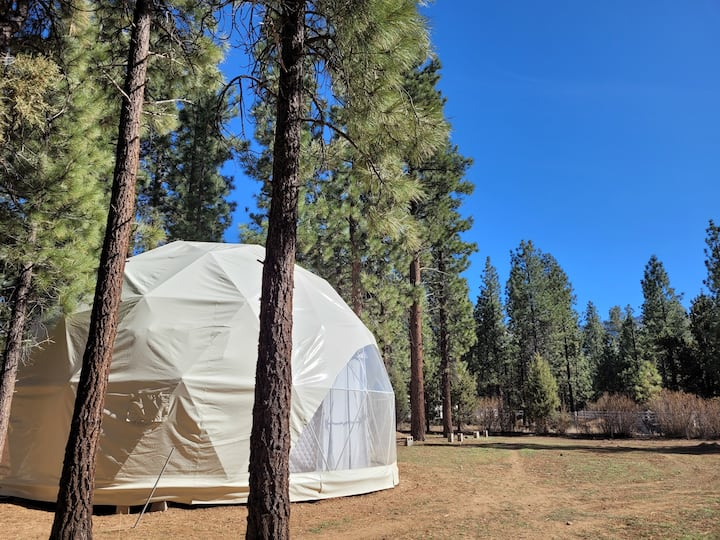 The Geodesic Dome! A One of a kind experience!