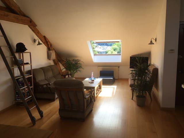 Appartement entier agréable et idéalement situé