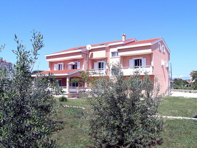 Holiday apartment Dalmatino in Vir