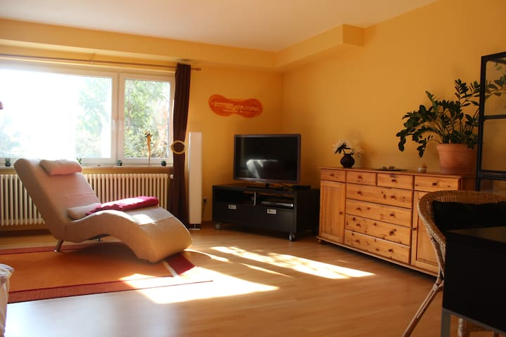 Private apartment with terrace & garden - Hartheim - Apartamento