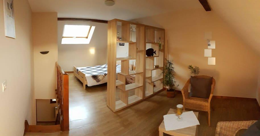 Gite 2/4 personnes en Centre Alsace - Saint-Maurice - Apartamento