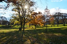 Powderhorn Park & Lake