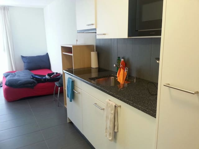 Super cozy and modern studio (central) - Fribourg - Leilighet