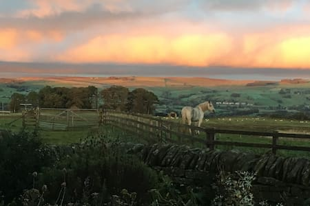Fantastic Bed & Breakfast High Keenley Fell Farm