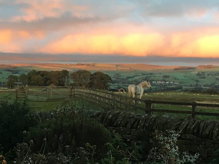 Fantastic Bed & Breakfast High Keenley Fell Farm
