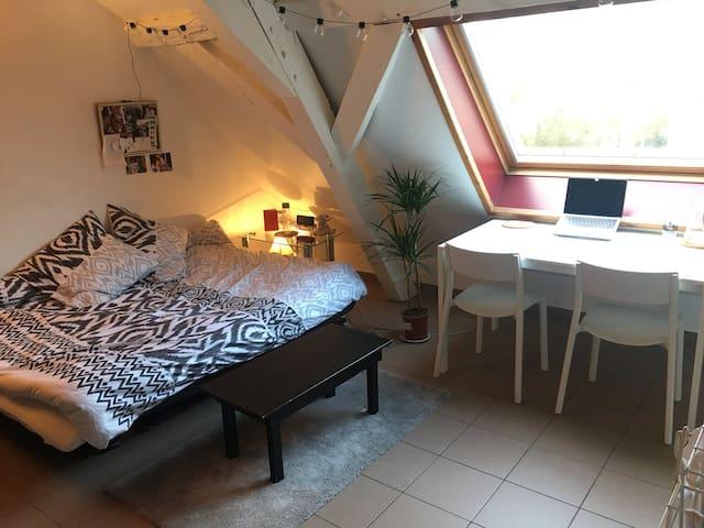 Studio meublé tout confort pour étudiants