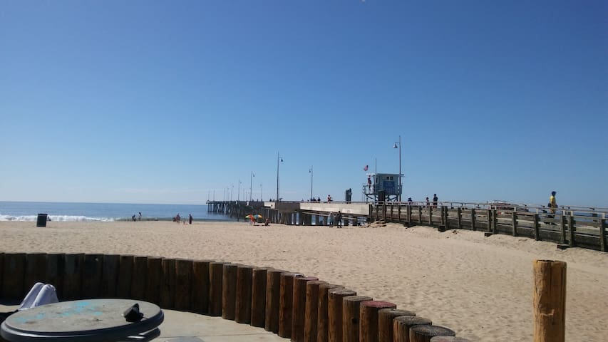 Venice Beach weekend!