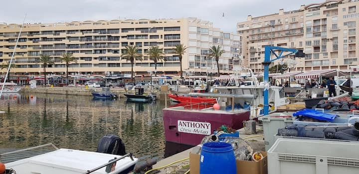 studio vue mer Saint Cyprien plage