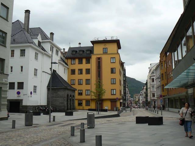 Comfortable Apt. in a Great Location - Bergen - Lägenhet